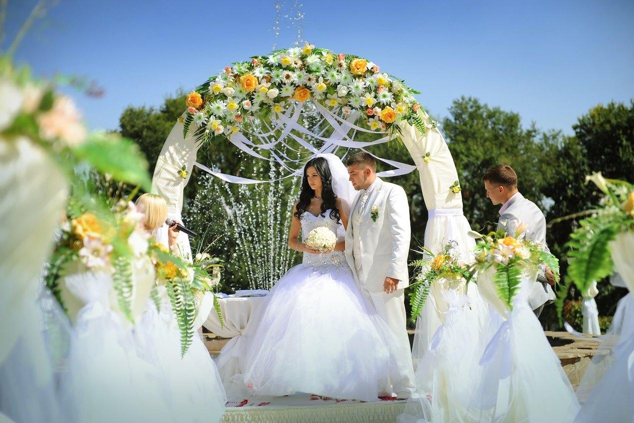 Как организовать проведение свадьбы
